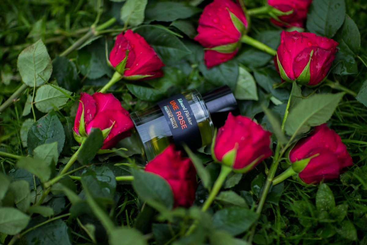 Une Rose, Frederic Malle, fragrance, духи, Фредрик Малль, Роза