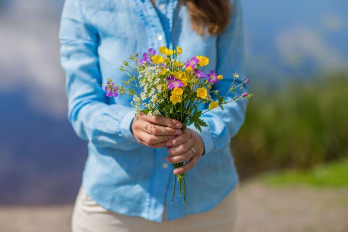 Wild flowers, italian style